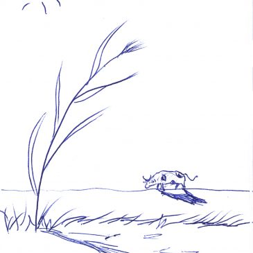 Ένα σκίτσο την ημέρα… A scketch per day… 28/7/16